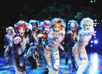 Клуб продвинутых зрителей мюзиклов Stage Door
