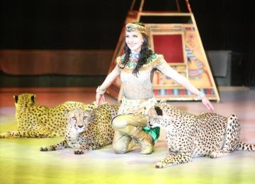 Дарья Костюк стала членом правления Союза цирковых деятелей России