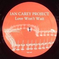 Love Wont Wait  (Remixes Vinyl)