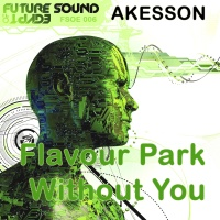 Without You / Flavour Park