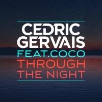 Through The Night (CID Remix)