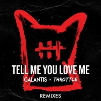 Tell Me You Love Me (Pat Lok Remix)