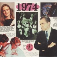 20 Original Chart Hits - 1974