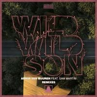 Wild Wild Son (Remixes) WEB