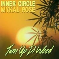 Turn Up Di Weed - Single