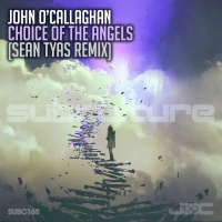 Choice Of The Angels (Sean Tyas Remix)