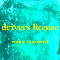 Drivers License - Single