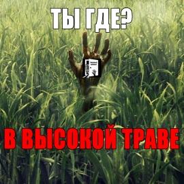 В высокой траве: ТЕБЯ НЕ НАЙДУТ. (срачеобзор фильма)